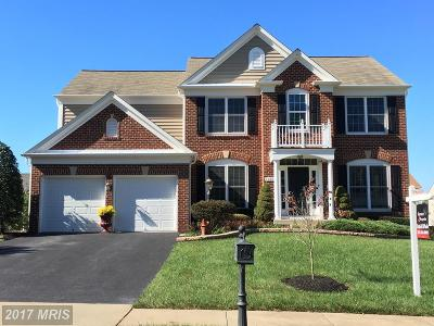 Manassas Single Family Home For Sale: 10881 Mayfield Trace Place