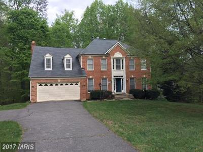 Manassas Single Family Home For Sale: 7892 Sly Fox Lane