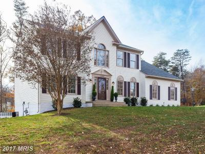 Manassas Single Family Home For Sale: 12305 Silent Wolf Drive