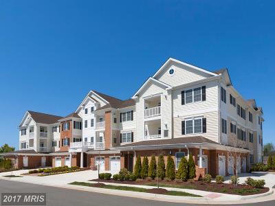 Haymarket VA Condo For Sale: $466,329