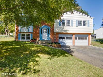 Woodbridge Single Family Home For Sale: 5535 Neddleton Avenue