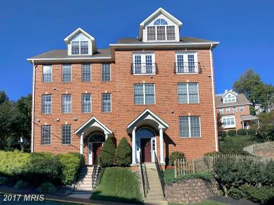 Occoquan Townhouse For Sale: 391 Myrtle Place