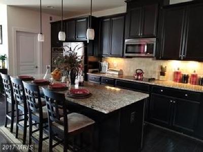 Manassas Rental For Rent: 8947 Englewood Farms Drive