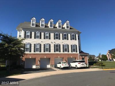 Gainesville Rental For Rent: 6857 Hampton Bay Lane