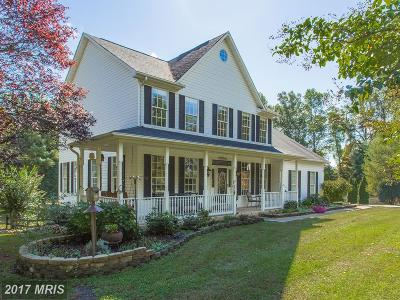 Haymarket Single Family Home For Sale: 16203 Crusade Court