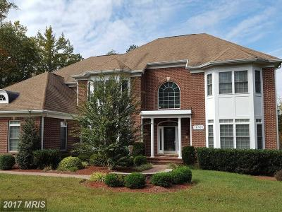 Nokesville Single Family Home For Sale: 10101 Alydar Court