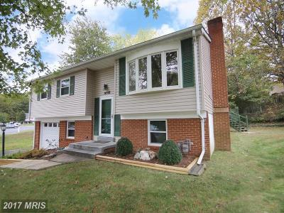 Prince William Single Family Home For Sale: 14392 Surrydale Drive