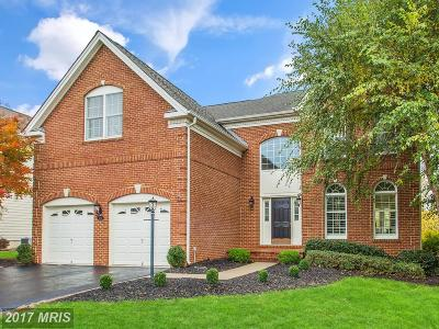 Haymarket Single Family Home For Sale: 5541 Hillsman Farm Lane