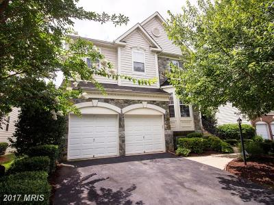 Prince William Single Family Home For Sale: 4843 Montega Drive