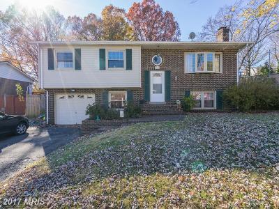Woodbridge Single Family Home For Sale: 4605 Dale Boulevard