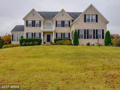 Nokesville Single Family Home For Sale: 12900 Fleetwood Drive