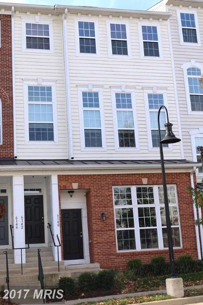 Haymarket Townhouse For Sale: 6142 Aster Haven Circle