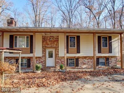 Manassas Single Family Home For Sale: 11039 Timberview Drive