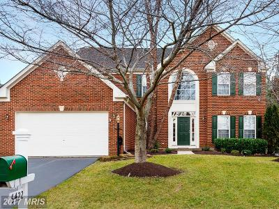 Haymarket Single Family Home For Sale: 6422 Ashby Grove Loop