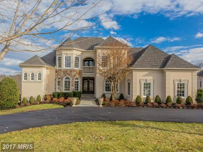 Prince William Single Family Home For Sale: 15850 Spyglass Hill Loop Loop
