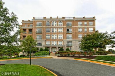 Condo/Townhouse Sold: 830 Belmont Bay Drive #402