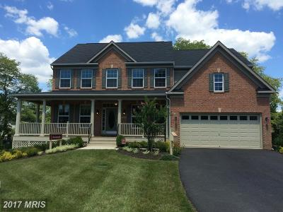 Manassas Single Family Home For Sale: 9408 Lomax Forest Drive