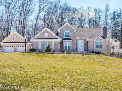 Manassas Single Family Home For Sale: 9800 Montyville Drive