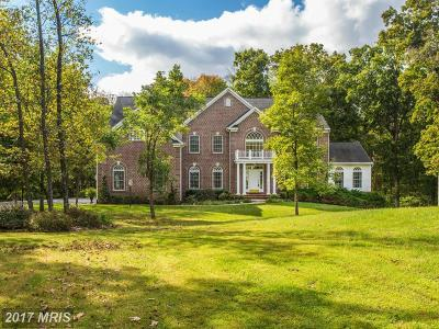 Haymarket Single Family Home For Sale: 2470 Logmill Road