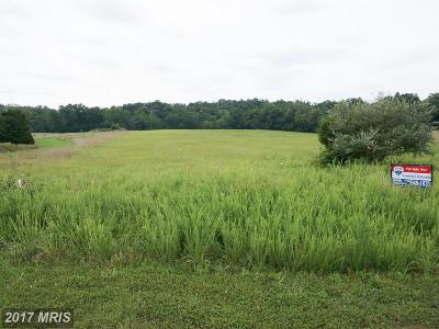 Gainesville Residential Lots & Land For Sale: 13011 Trappers Ridge Court