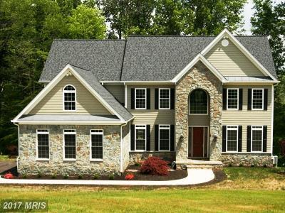 Nokesville Single Family Home For Sale: 9950 Alydar Court