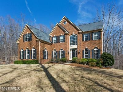 Manassas Single Family Home For Sale: 11609 Lakeway Drive