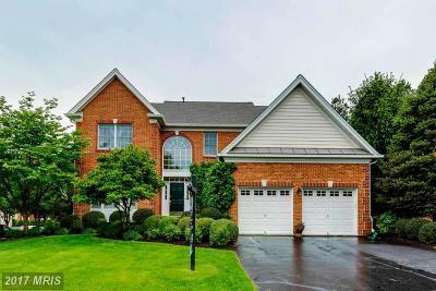 Haymarket Single Family Home For Sale: 15059 Jupiter Hills Lane