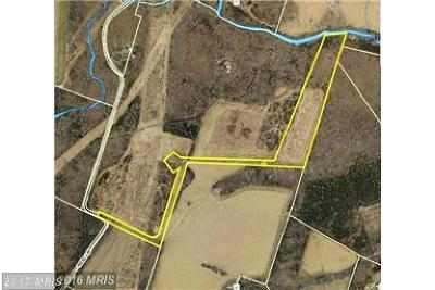 Nokesville Residential Lots & Land For Sale: 11225 Reid Lane NE