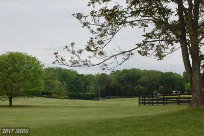 Nokesville Residential Lots & Land For Sale: 13651 Seabiscuit Lane