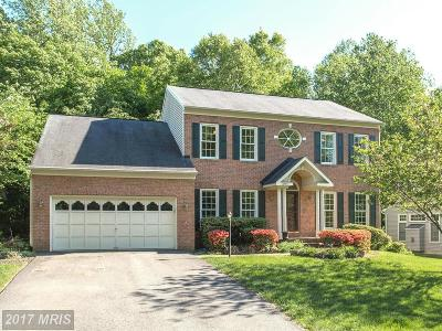 Manassas Single Family Home For Sale: 7853 Elsinore Drive