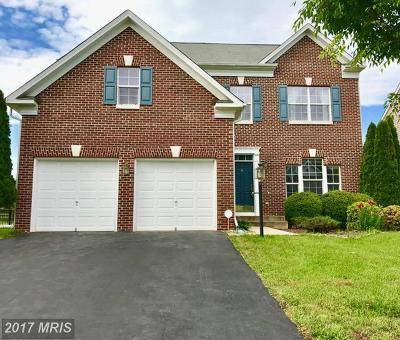 Bristow Single Family Home For Sale: 12524 Erroll Lane