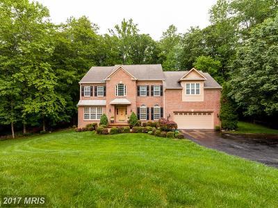 Manassas Single Family Home For Sale: 12540 Brenmill Lane