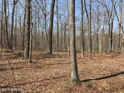 Haymarket Residential Lots & Land For Sale: 3834 Mountain Road