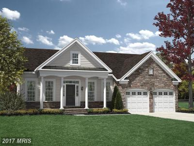 Haymarket Single Family Home For Sale: 15442 Cross Keys Road