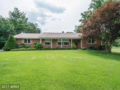 Haymarket Single Family Home For Sale: 2513 Little River Road
