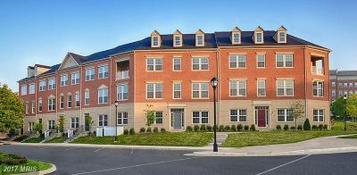 Madison Crescent, Madison Crescent Condomi Townhouse For Sale: 7820 Crescent Park Drive