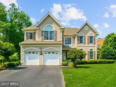 Haymarket Single Family Home For Sale: 5240 Plain Tree Way