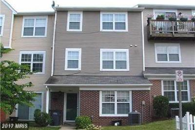 Manassas Rental For Rent: 7903 Apache Ridge Court