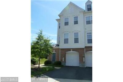 Gainesville Rental For Rent: 14473 Macon Grove Lane