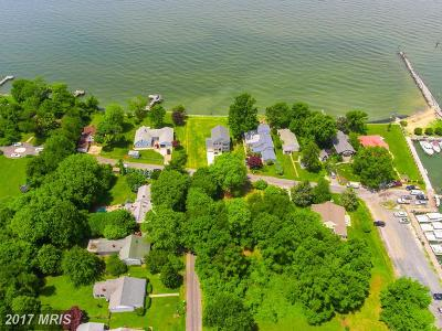 Stevensville Residential Lots & Land For Sale: Chesapeake Avenue