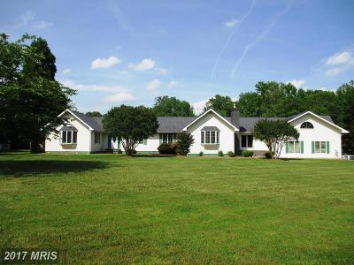 Centreville Single Family Home For Sale: 100 Creek Point Road