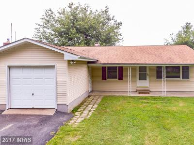 Stevensville Single Family Home For Sale: 604 Bayside Drive