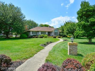 Grasonville Single Family Home For Sale: 1 Caddy Court
