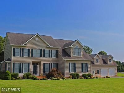 Centreville Single Family Home For Sale: 229 Claiborne Fields Drive