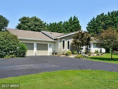 Single Family Home For Sale: 136 Sheaffer Road