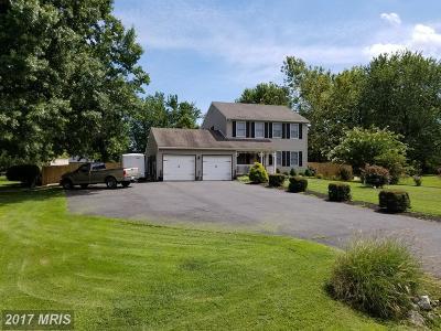 Single Family Home For Sale: 310 Skipper Lane