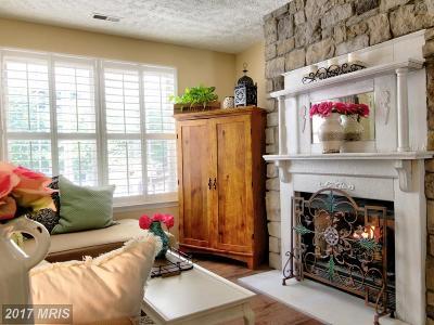 Grasonville Single Family Home For Sale: 451 Timber Lane