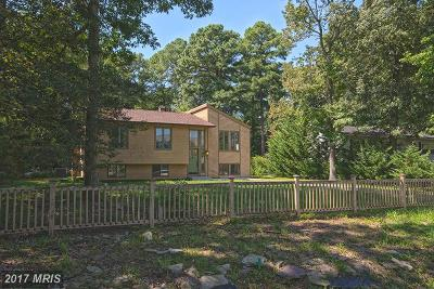 Stevensville Single Family Home For Sale: 558 Talbot Road