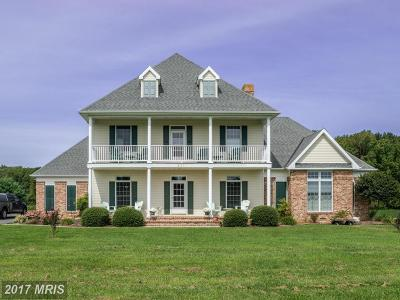 Centreville Single Family Home For Sale: 531 White Marsh Road