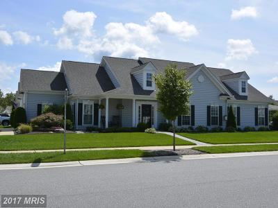 Centreville Single Family Home For Sale: 610 Symphony Way